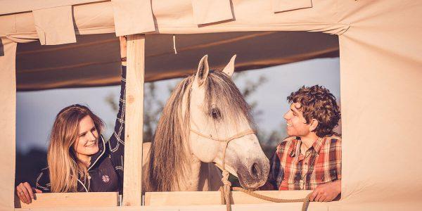 Equilumina-Zelten-mit-Pferd (10)