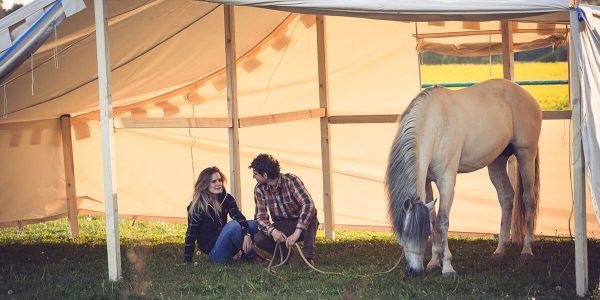 Equilumina-Zelten-mit-Pferd (3)